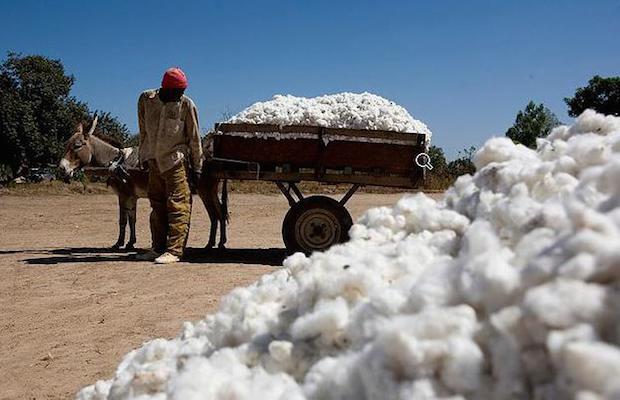 Mali: Le secteur de l'industrie se heurte aux dispositions de l'UEMOA