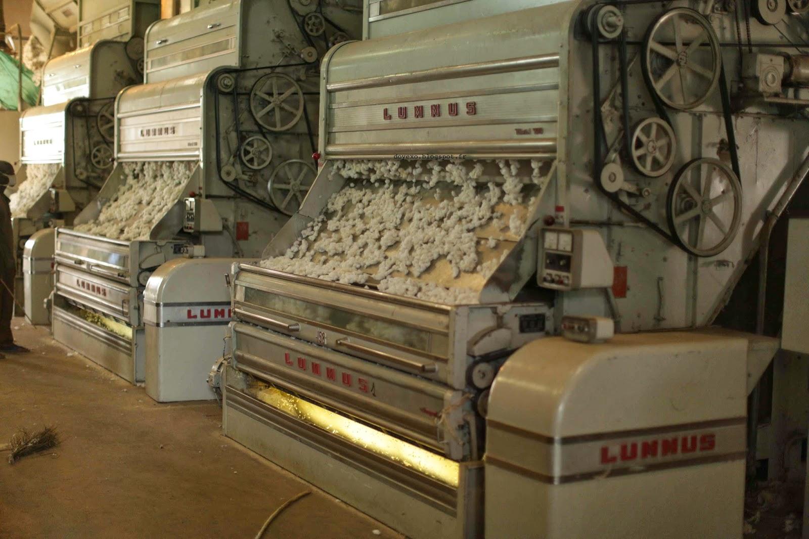 Bénin/ Coton: Améliorer l'égrenage pour augmenter la production