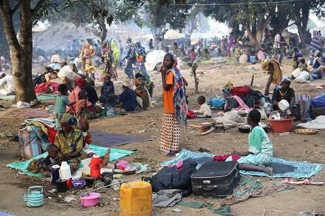 Cameroun : les conditions de vie précaires des « déplacés » de Boko Haram