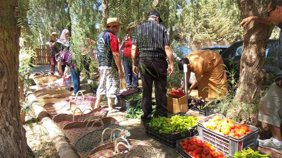 L'Algérie veut réduire sa dépendance alimentaire grâce à l'agro-écologie