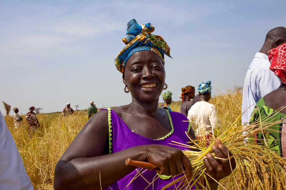 Vers l'amélioration des conditions des femmes en Afrique subsaharienne