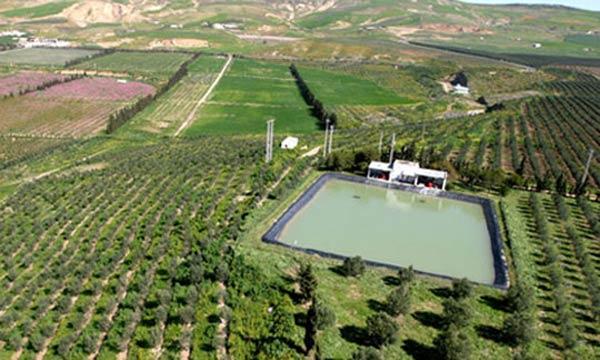 La Banque Mondiale qualifie d'approche gagnante le Plan Maroc Vert