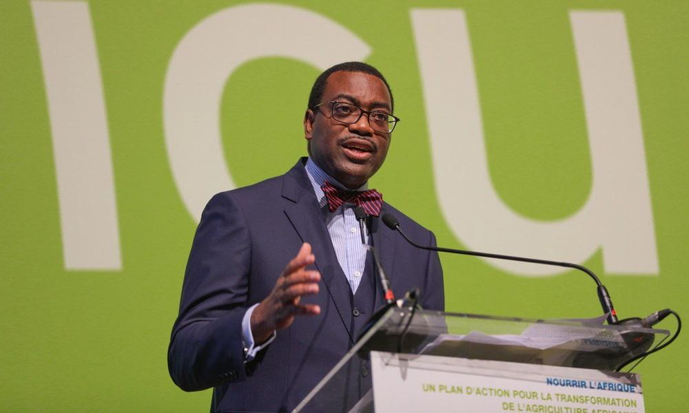 Le président de la BAD Akinwumi Adesina est au Cameroun