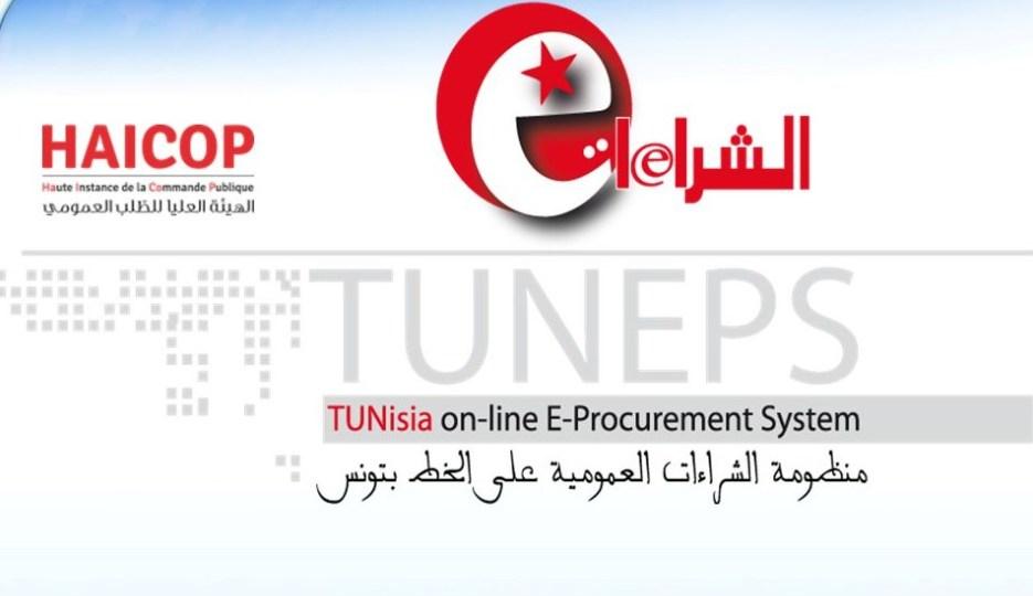 Tunisie: Le secteur public soumis au TUNEPS