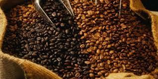 Le prix du café en Côte d'ivoire fixé à 700 FCFA/kg pour la campagne 2018-2019