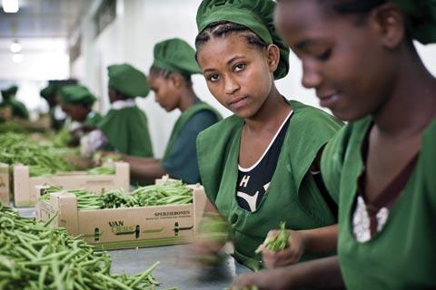 La BAD étudie la question de l'emploi décent en Afrique