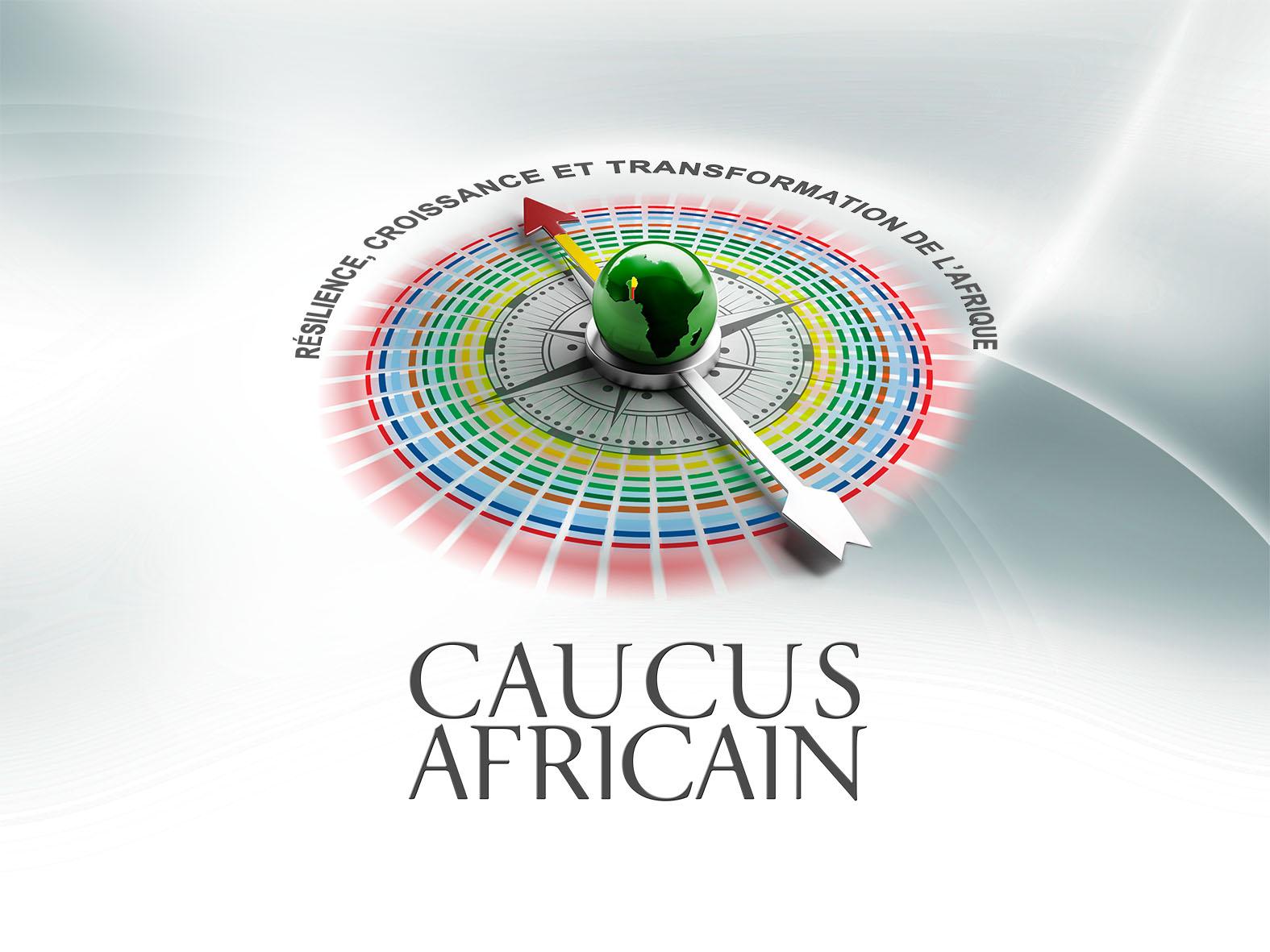 FMI-BM-Assemblées: Le Caucus africain préoccupé par le capital humain et l'emploi