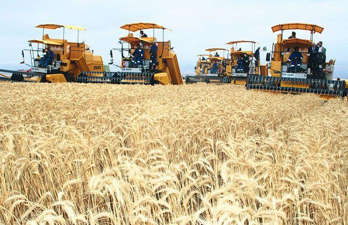 Algérie : Le PLF 2021, pas suffisamment agricole