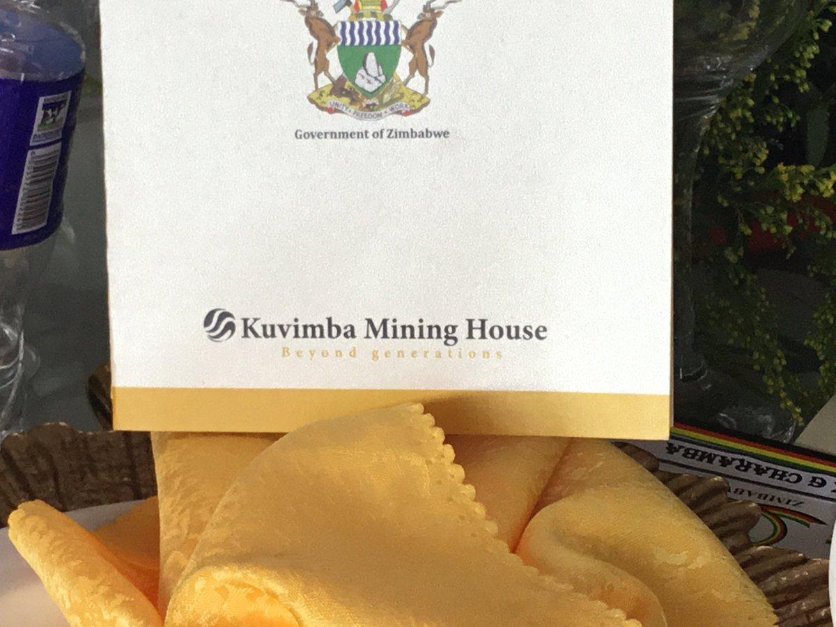 Le Zimbabwe va introduire sa société minière en bourse pour relancer l'économie