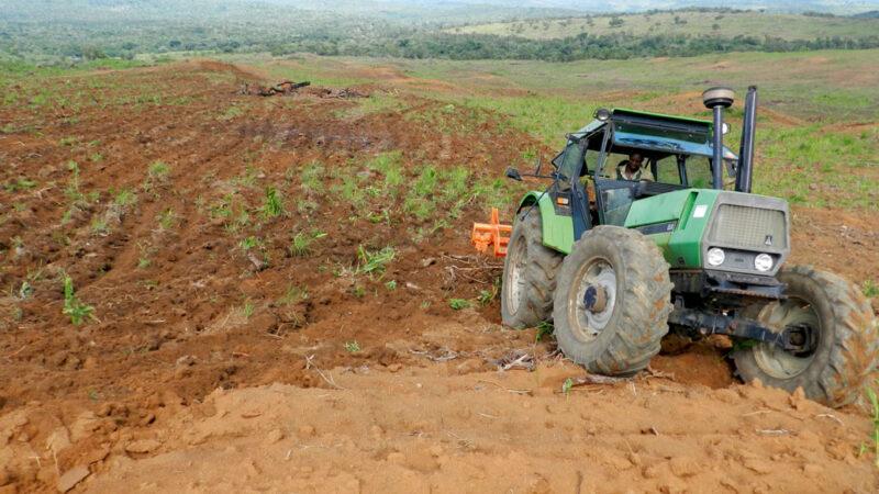 Cameroun: Exonération des droits de douane au bénéfice du secteur agricole