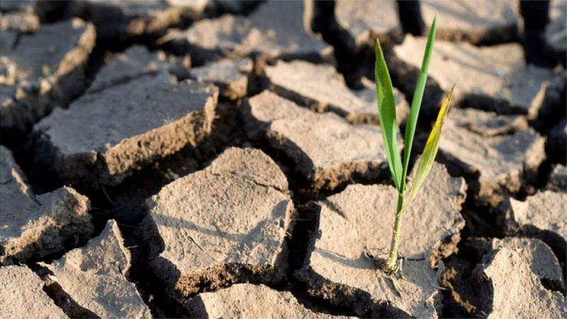La BAD cherche à réduire le poids des dépenses climatiques