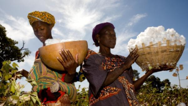 Economie: Moody's analyse les risques pour le Mali