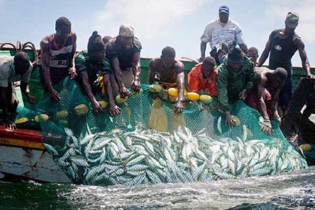 Le Cameroun soutient que la pêche artisanale n'est pas une pêche illicite