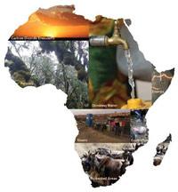 L'Afrique : un marché qui séduit l'investisseur étranger