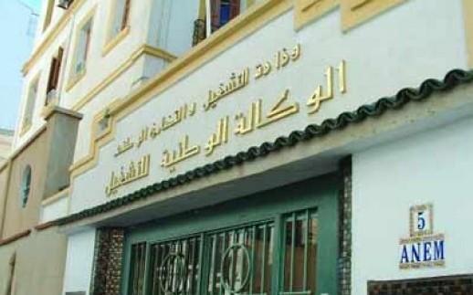 Algérie: le marché de l'emploi